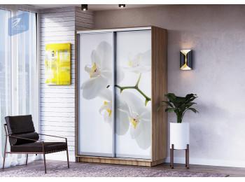 Белая орхидея (0)