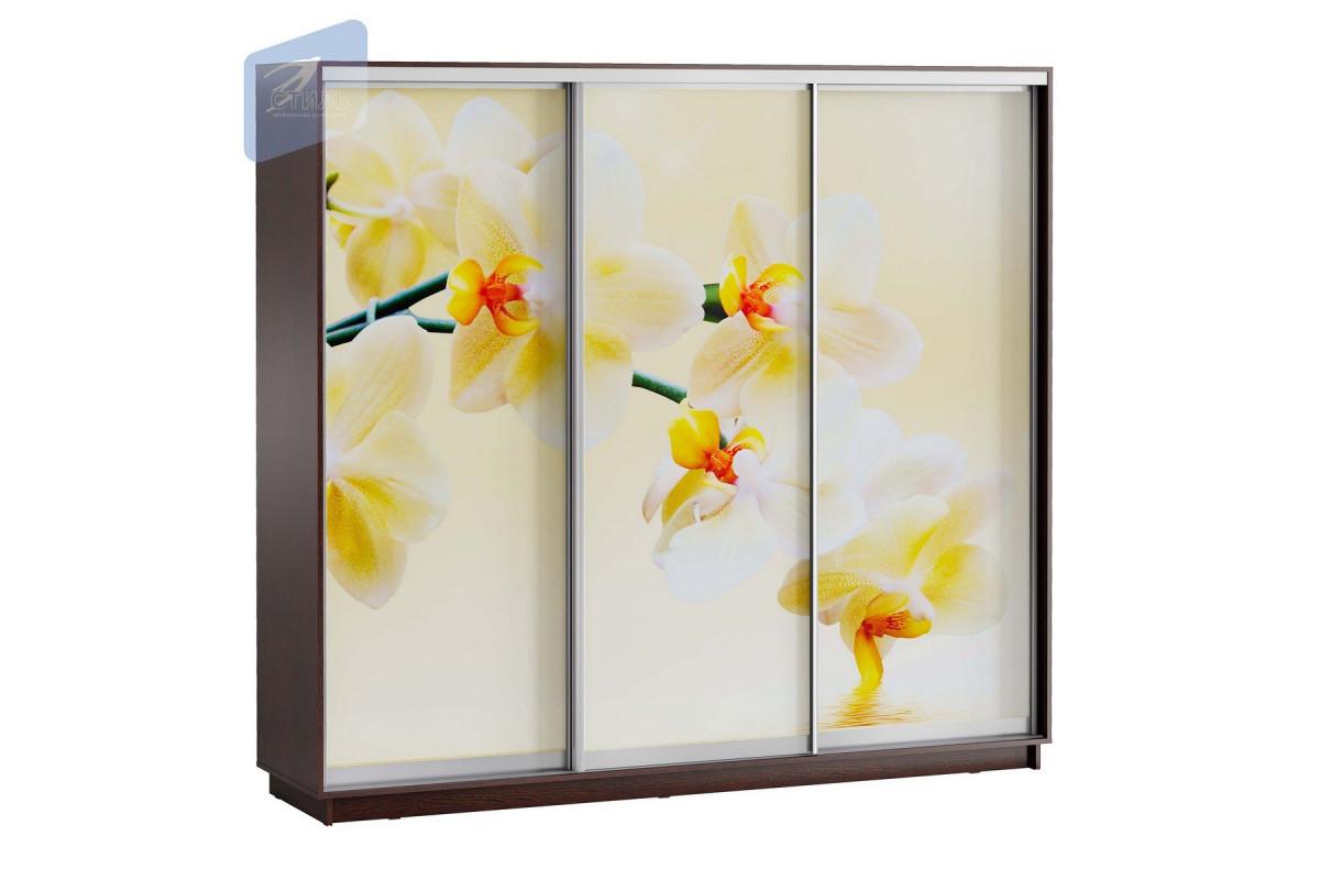 ЛЕО Шкаф Белая Орхидея 2400